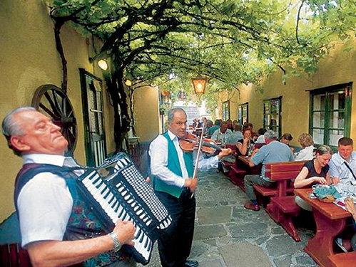 Вопреки расхожему мнению, жители Вены больше пьют вино, нежели пиво. За один вечер, под жареную свинину с капустой, добропорядочный австриец легко уговаривает пару бутылок Хойригера