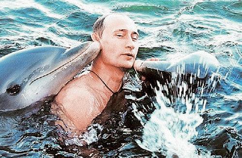 Пользу от общения с дельфинами в своё время оценил и Владимир ПУТИН