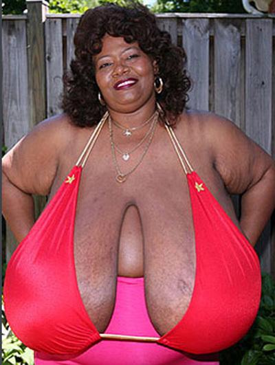 Каждая грудь Нормы ШТИЦ весит приблизительно 25 кг (Фото с сайта kp.ru)