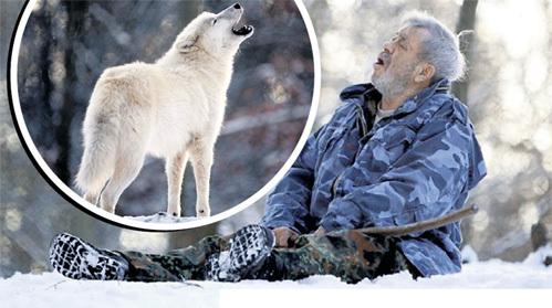 Владелец питомника считает, что на три четверти он уже волк