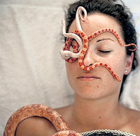 Отважные люди, испытавшие на себе гадотерапию, говорят, что ощущения от неё похожи на холодный компресс