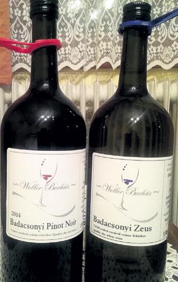 Правила виноделов в регионе Бадачонь: бутылок объёмом меньше 1,5 л не было