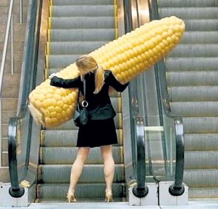 Гоу хоум, кукуруза-мутант!