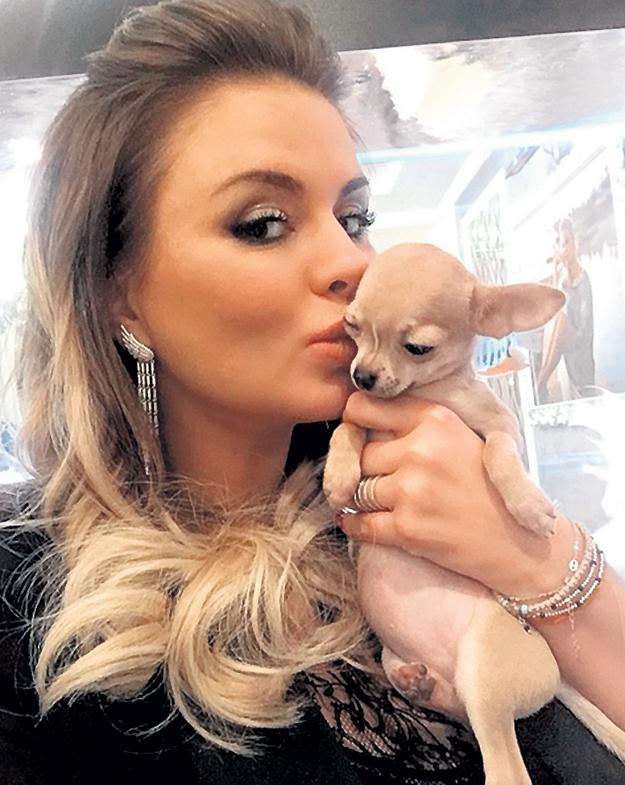 На днях СЕМЕНОВИЧ завела маленького друга. Собачку назвала Мишель. Фото: Instagram.com