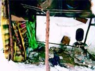 """ЖИЛИЩЕ БОМЖА: возле помойки постоянная """"прописка"""" у 500 бездомных"""