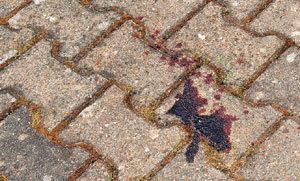 ...и потерял много крови