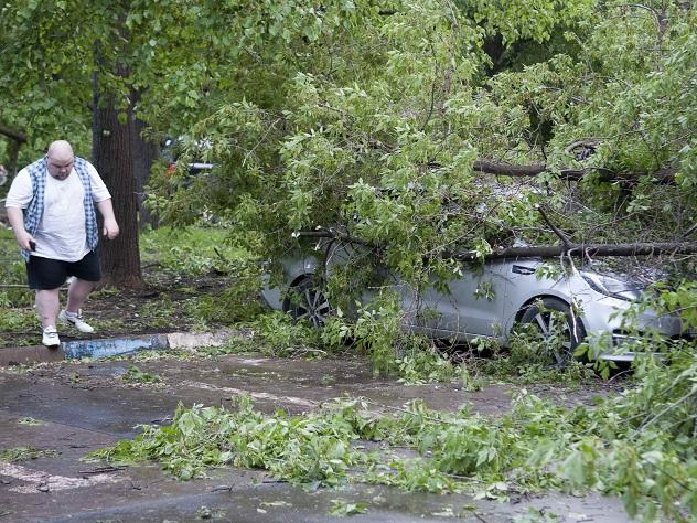 Страховые агенты заплатят 100 млн руб. замосковский циклон