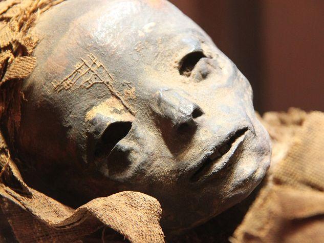 Ученые узнали происхождение старинных египтян