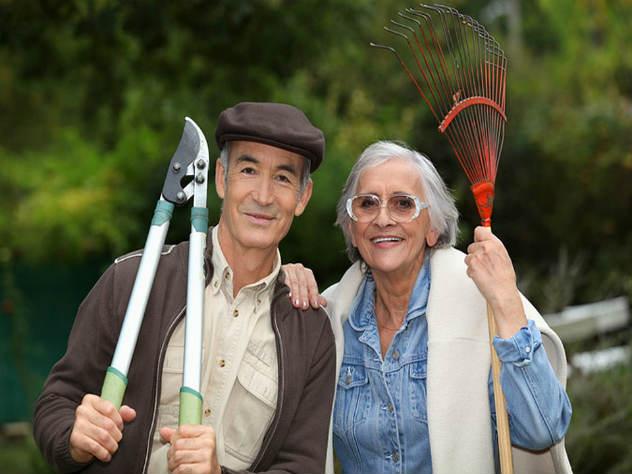 Минэкономразвития предлагает освободить пенсионеров-предпринимателей от взносов в ПФР